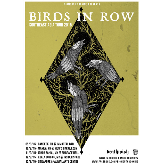 birds-in-row-tour-insta-copy